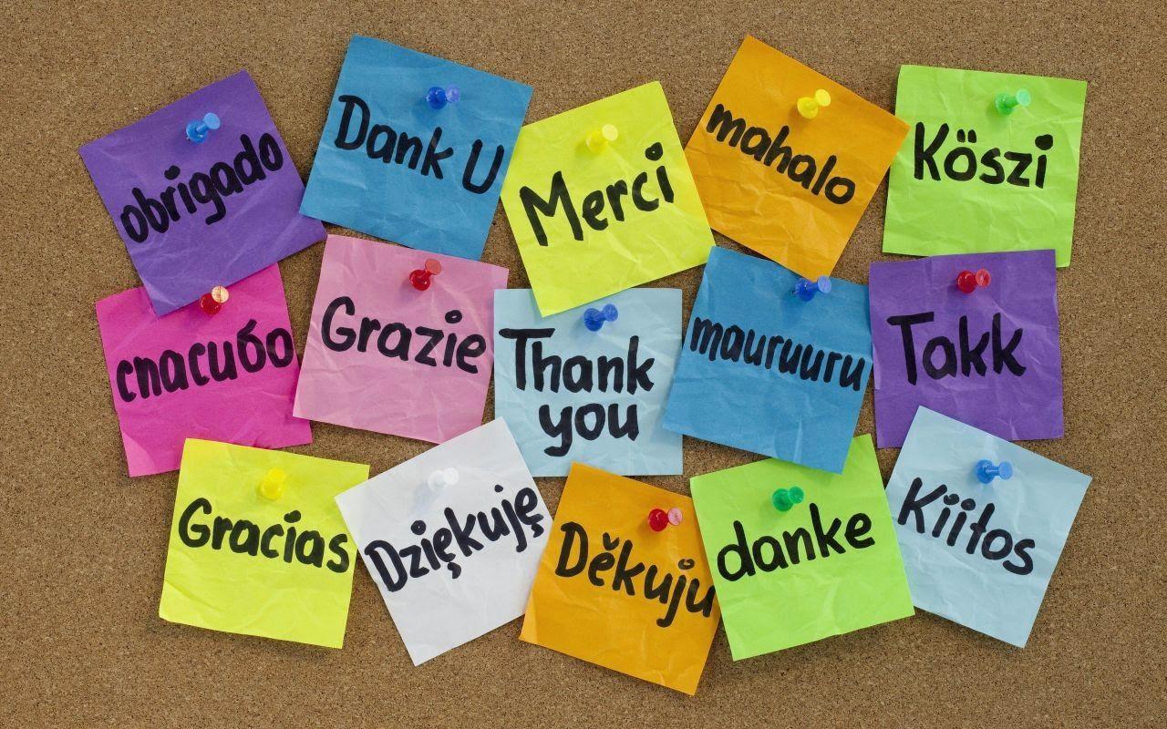 Nouer de nouvelles relations lors d'un séjour linguistique